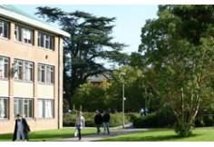 Institution University of Reading, School of Languages & European Studies Berkshire United Kingdom
